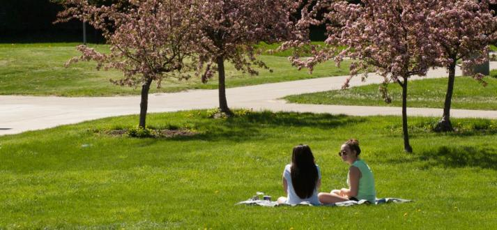 Students enjoying outdoors